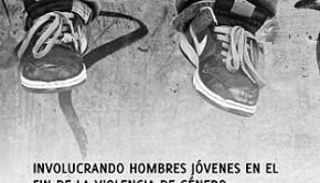2011 Eval Proyecto Hombres Jovenes x el Fin de la Violencia